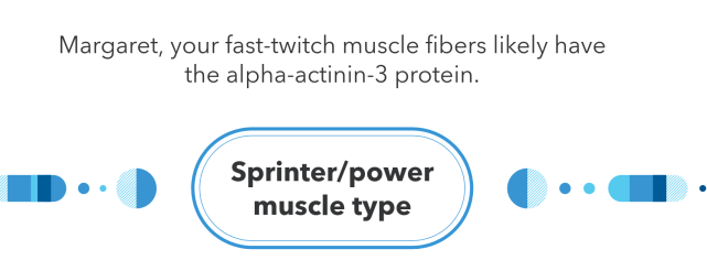 sprinter-power-muscle-type