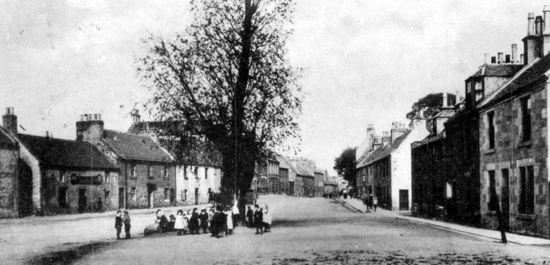 old-photograph-katie-wearies-tree-linlithgow-scotland